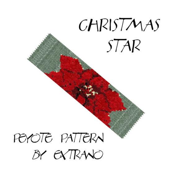 Christmas Star 0